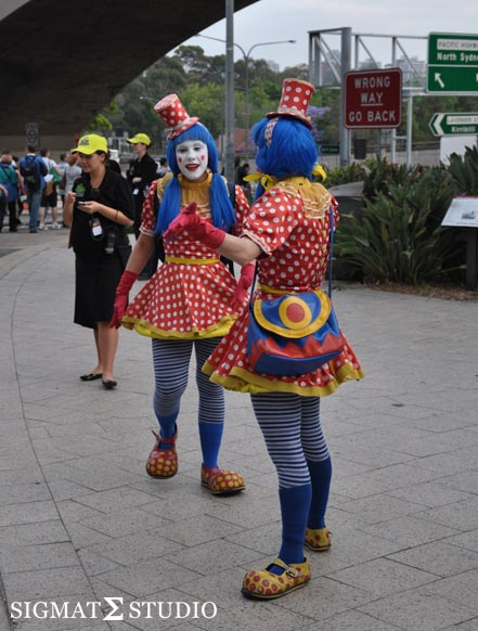 Grass Picnic Sydney Harbour Bridge Clown