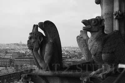 notre dame, iphone, wallpaper, ghttp://sigmatestudio.com/wp-admin/post-new.phpargoyle, paris, ebay,sale