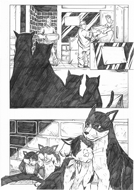 Tabby, P.R.Dedelis, Graphic novel, project start